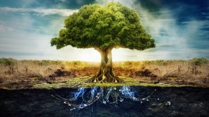 23505_1_miscellaneous_digital_art_tree_of_life
